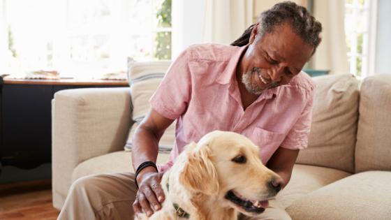 Senior man petting dog